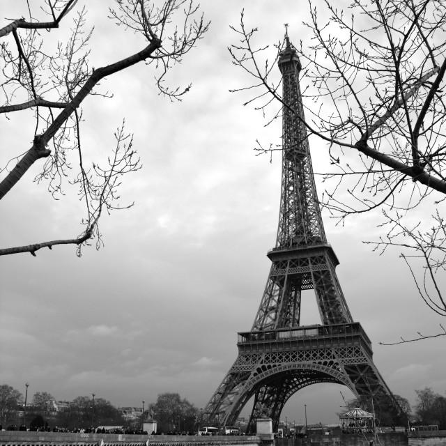 """Eiffel tower with bridge"" stock image"