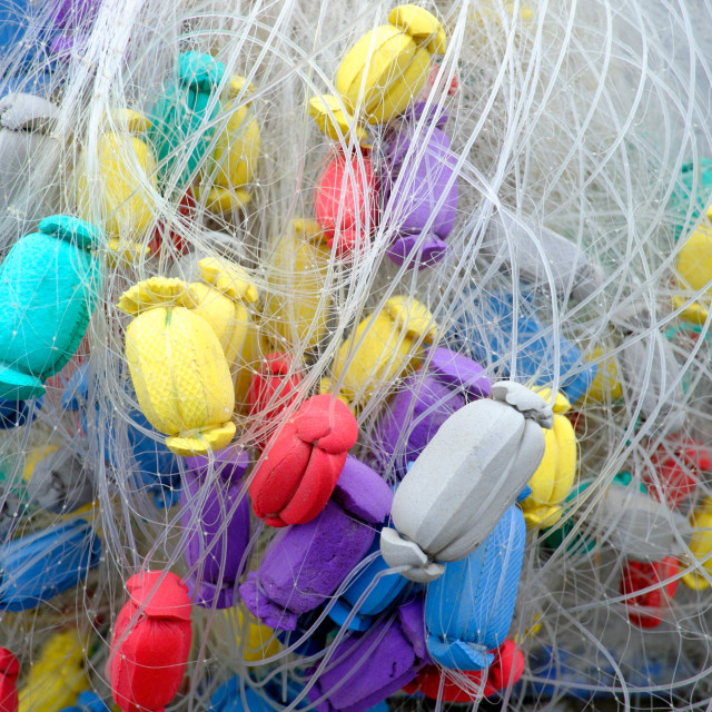 """Colorful fishery net"" stock image"