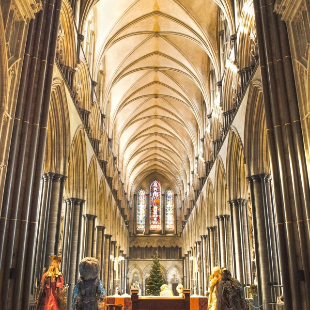 """Salisbury Cathedral At Christmas Time"" stock image"