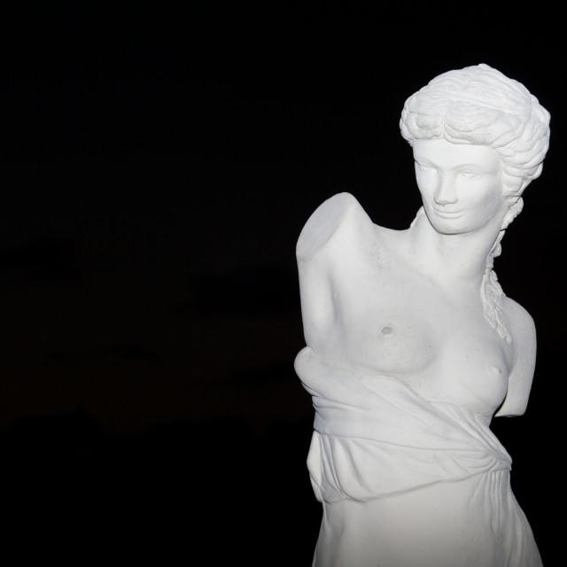 """Statue At Night"" stock image"