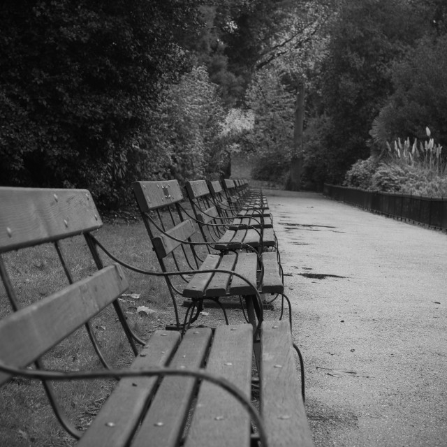 """Benches"" stock image"