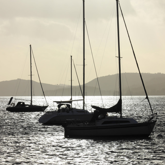 """""""Yachts on Windermere (winter)"""" stock image"""