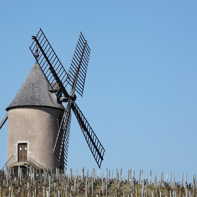 """Moulin a vent in Beaujolais"" stock image"