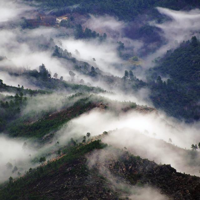 """Cevennes mountain range"" stock image"