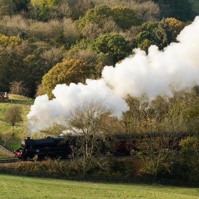 """Countryside Steamer"" stock image"
