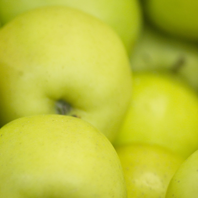 """Green apples"" stock image"