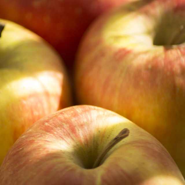 """Red and green apples"" stock image"