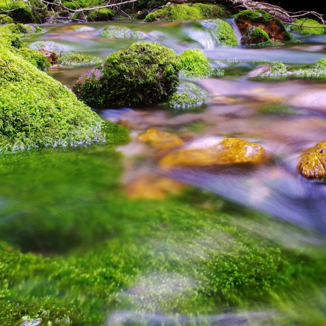 """Silky water"" stock image"
