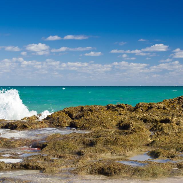"""Atlantic Ocean - seen from West Palm Beach"" stock image"