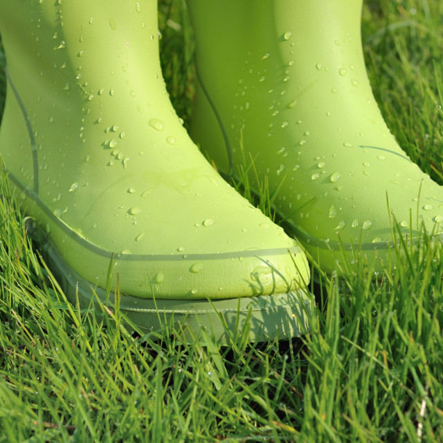 """""""water drops on rubber boots"""" stock image"""