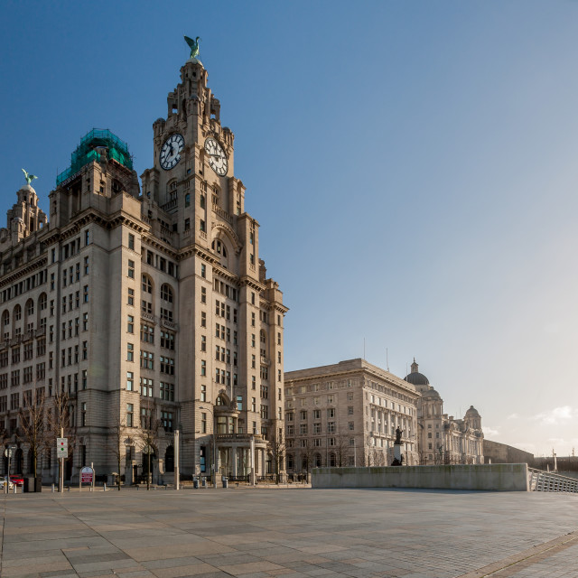"""Liver Building"" stock image"