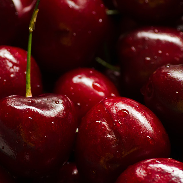 """Cherries Ripe"" stock image"