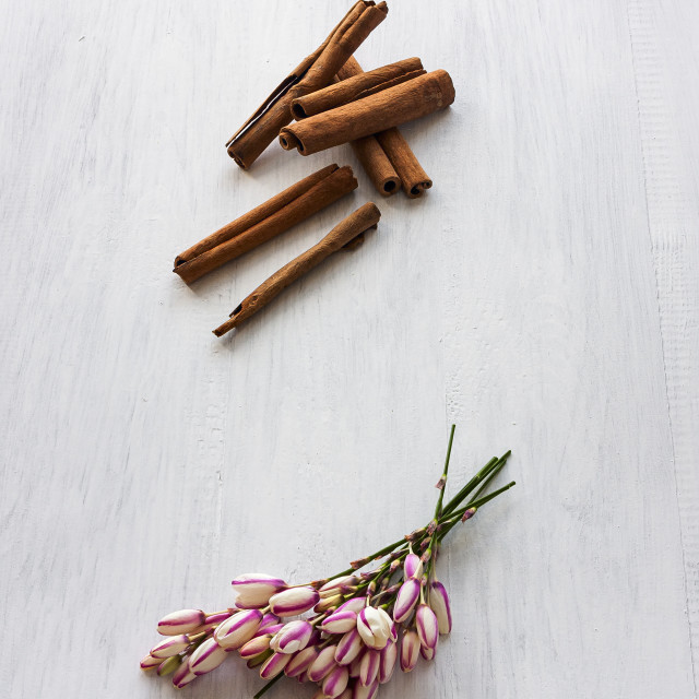 """flowers and cinnamon"" stock image"
