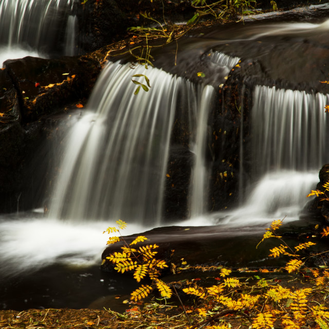 """Black and Gold Falls"" stock image"