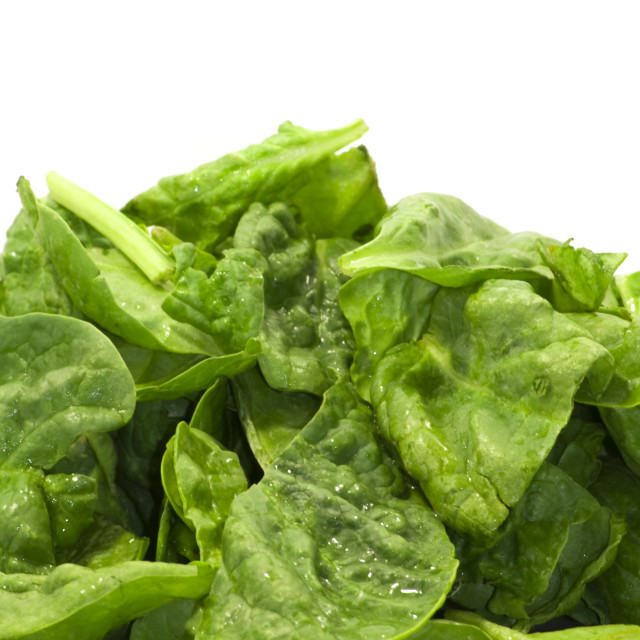 """""""Fresh green leaves spinach on a white background"""" stock image"""
