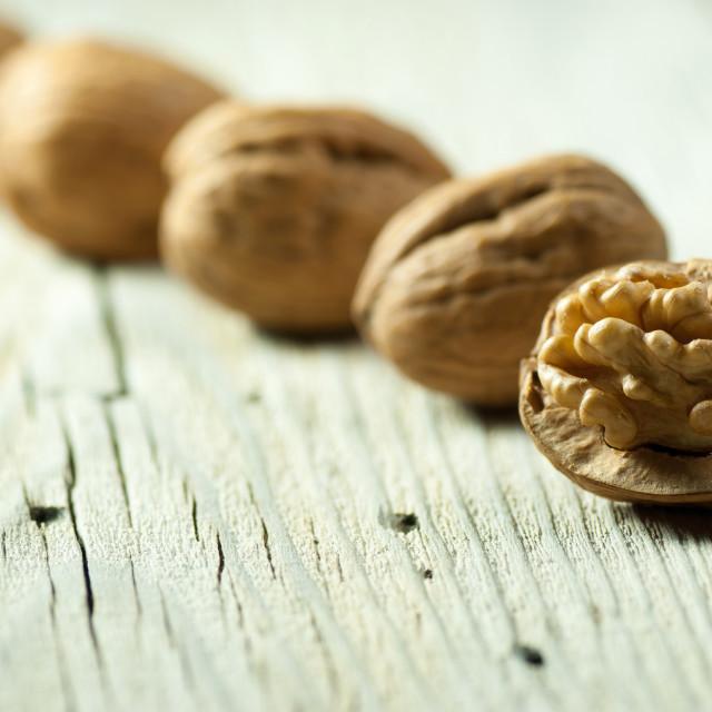 """Walnuts"" stock image"