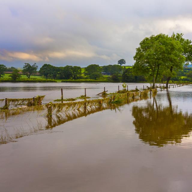 """Flooded Farm-land"" stock image"