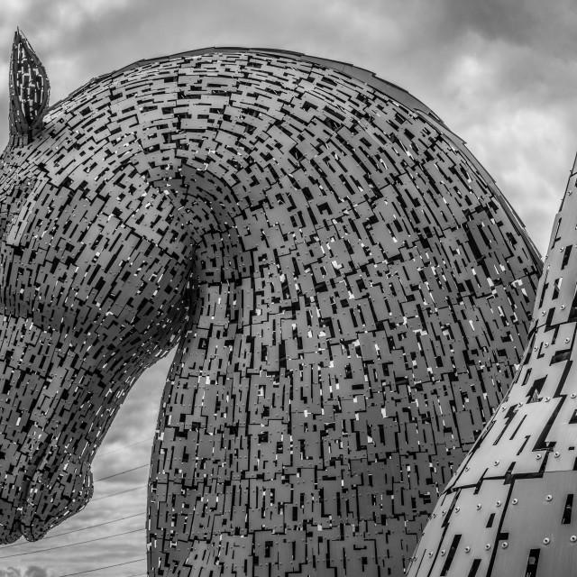 """The Kelpies, Falkirk"" stock image"