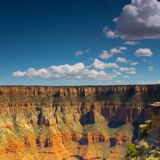 """Grand Canyon"" stock image"