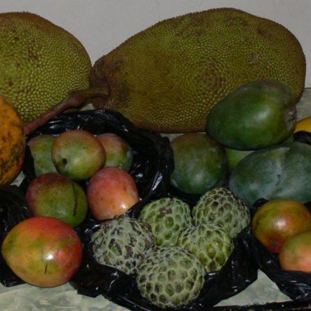 """""""Mixed fruits, jack fruits, mango, custard apple"""" stock image"""