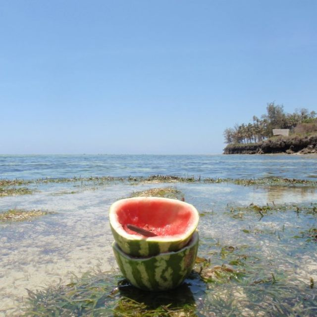 """""""Water melon meal in the sea"""" stock image"""