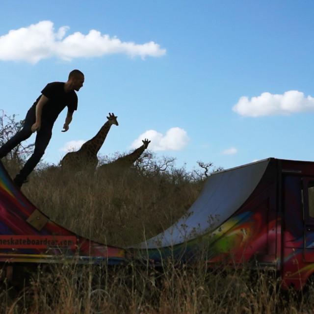 """The skatebard car with giraffe audience"" stock image"