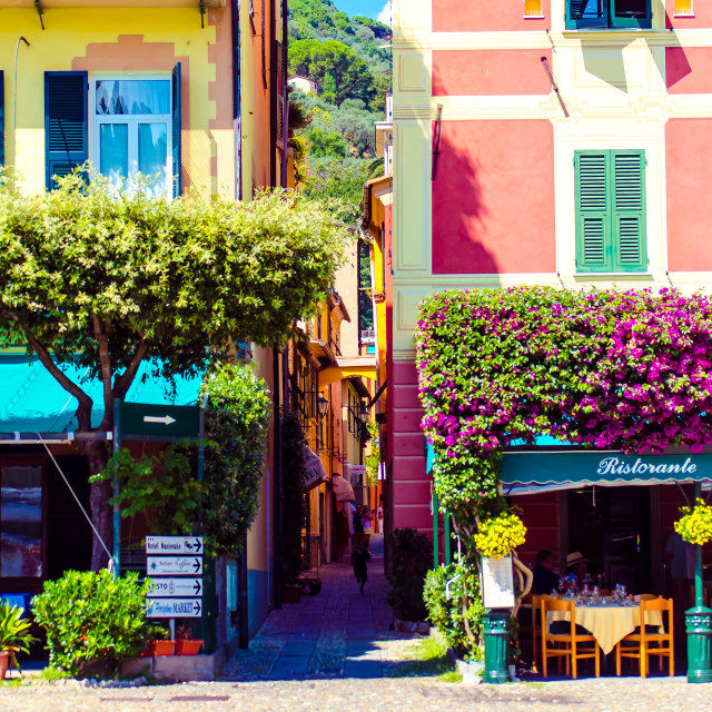 """Summer in Portofino"" stock image"