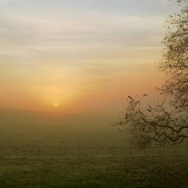 """sunrise on an autumn day"" stock image"