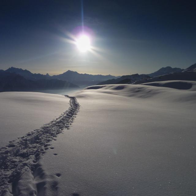 """Snow Track"" stock image"