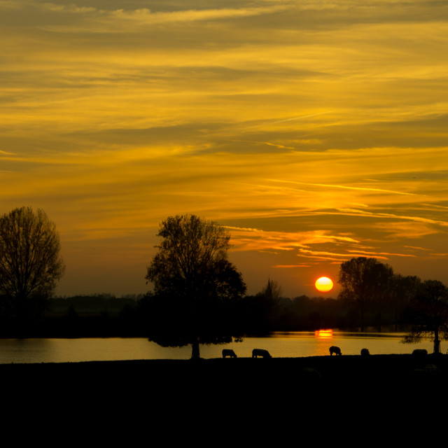 """Sunset on the Maas River"" stock image"