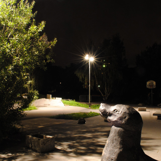 """Seal sculpture, park by night"" stock image"