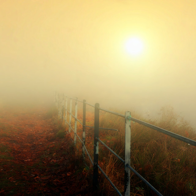 """sunrise on a misty Autumn day in london"" stock image"