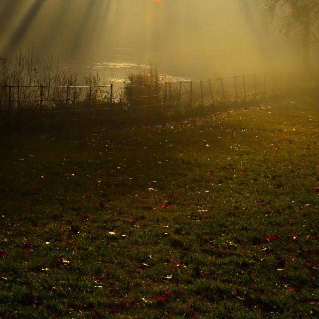 """""""stunning sunrays on an autumn day in london"""" stock image"""