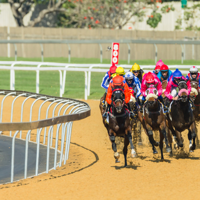 """Horse Racing Action"" stock image"