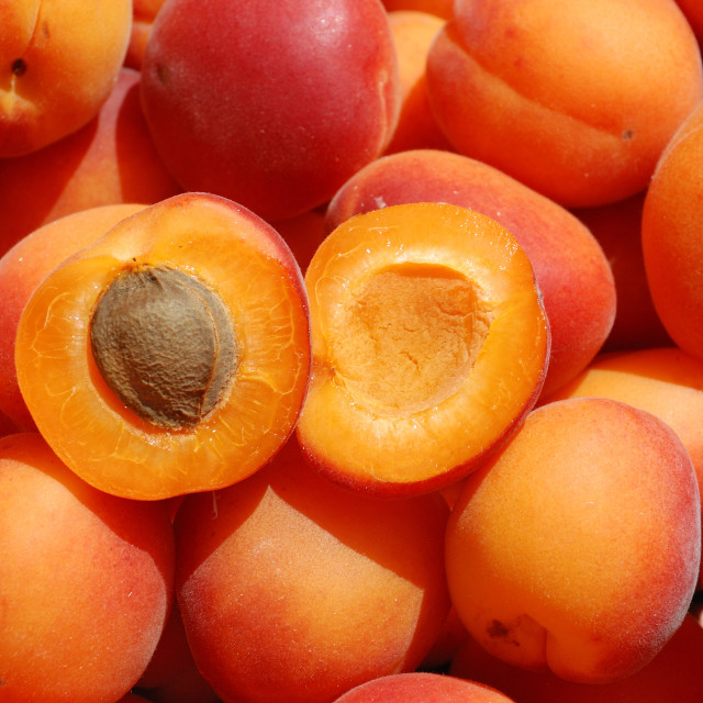 """Many apricot"" stock image"