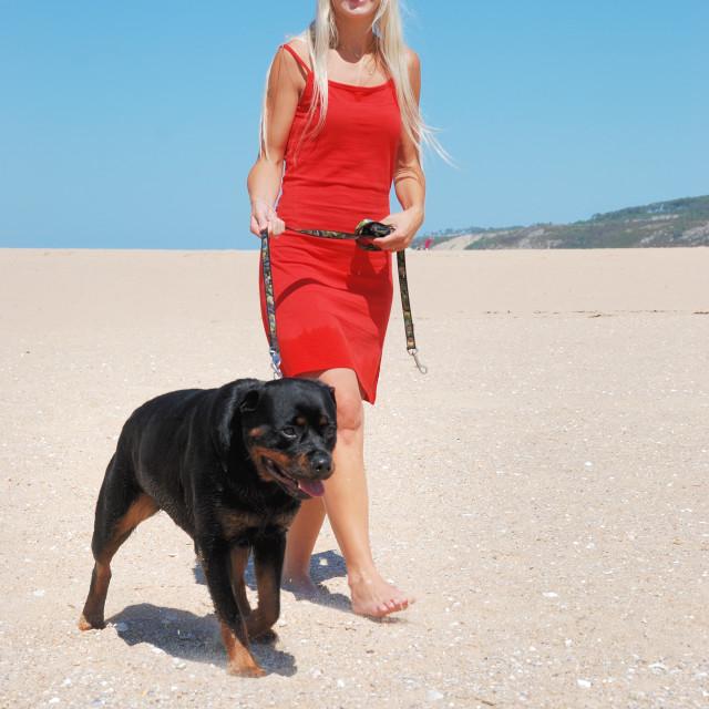 """""""Femme sur la plage promenant son chien"""" stock image"""