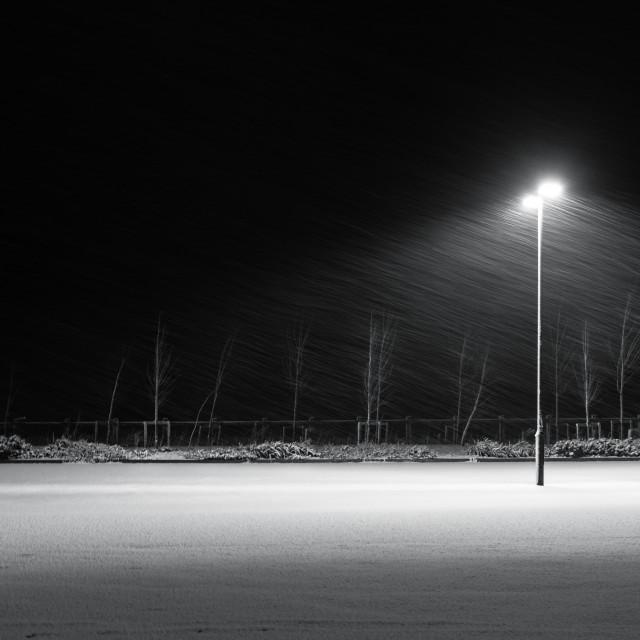 """Winter Blast"" stock image"