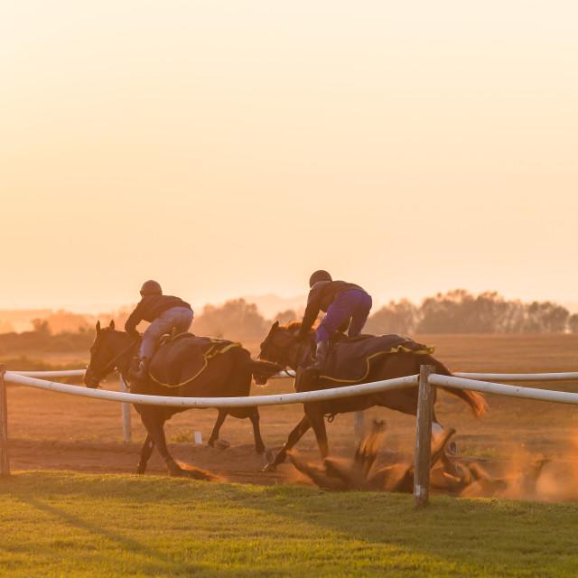 """""""Race Horses Training"""" stock image"""