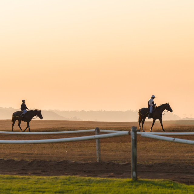 """Riders Horses Dawn"" stock image"