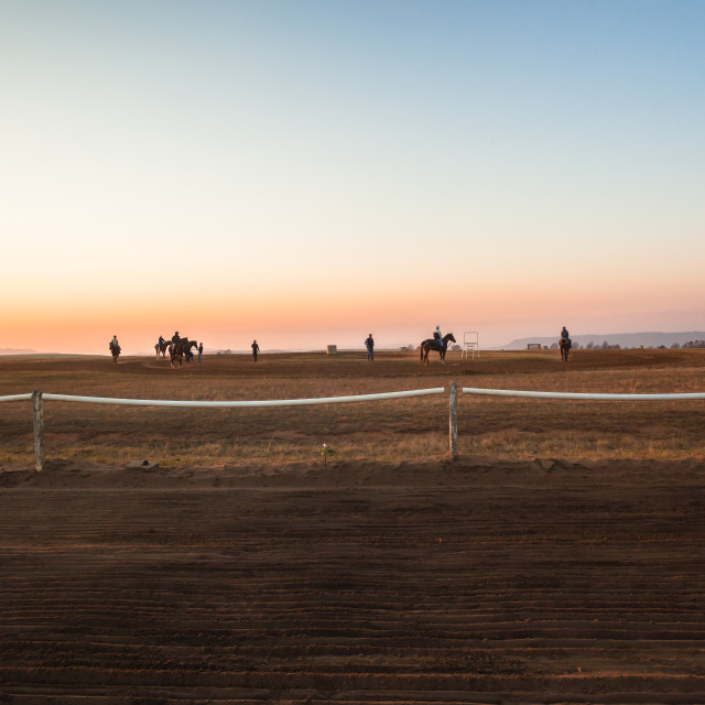 """Race Horses Dawn Landscape"" stock image"