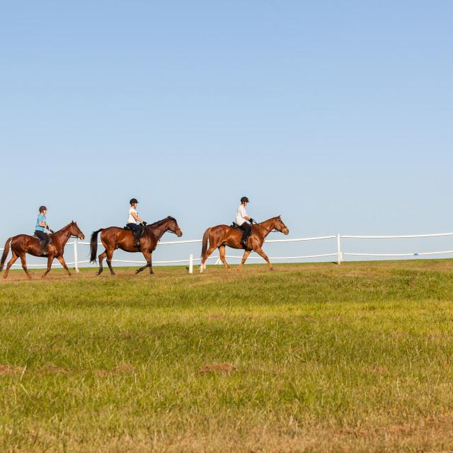 """Horses Riders Women"" stock image"