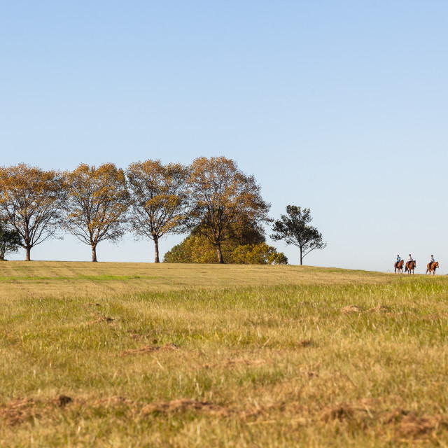 """Horses Riders Landscape"" stock image"