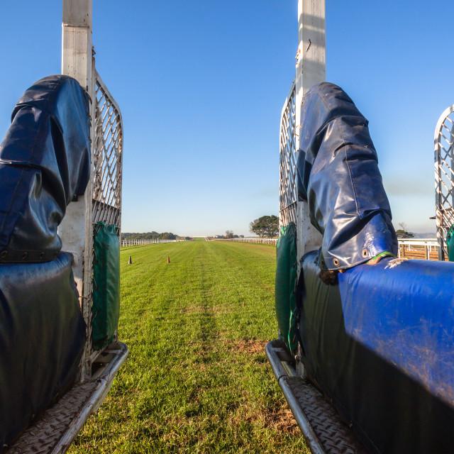 """Horse Racing Gates"" stock image"