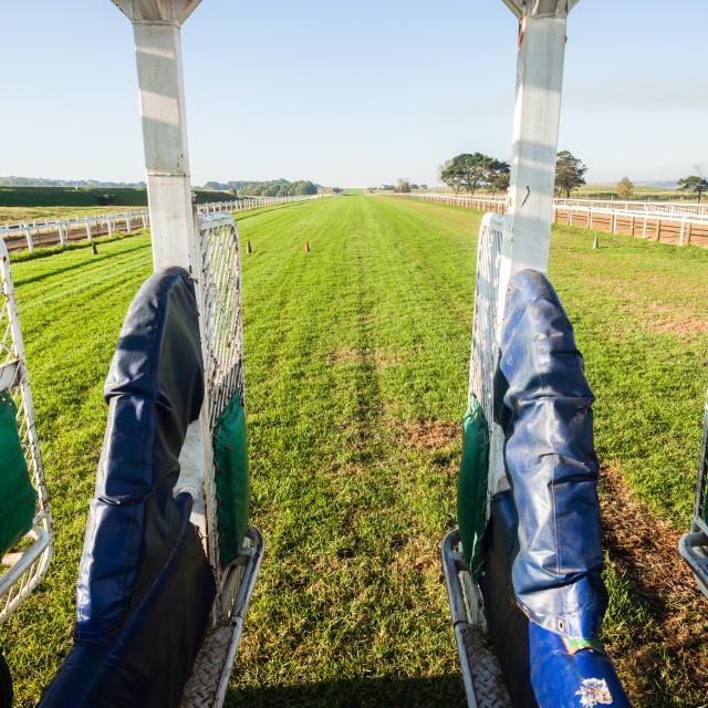 """Horse Racing Start Gates"" stock image"