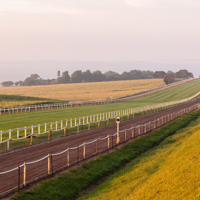 """Horse Racing Tracks"" stock image"