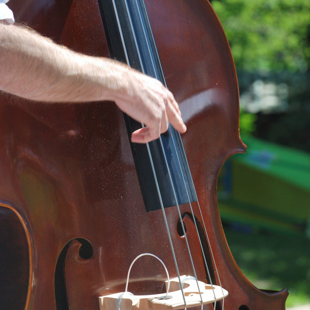 """man playing double bass"" stock image"