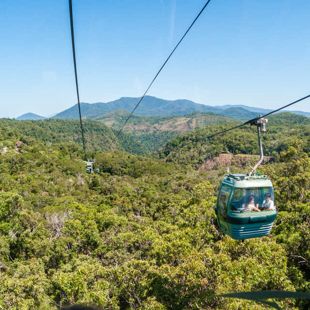"""Cable Car Forests"" stock image"