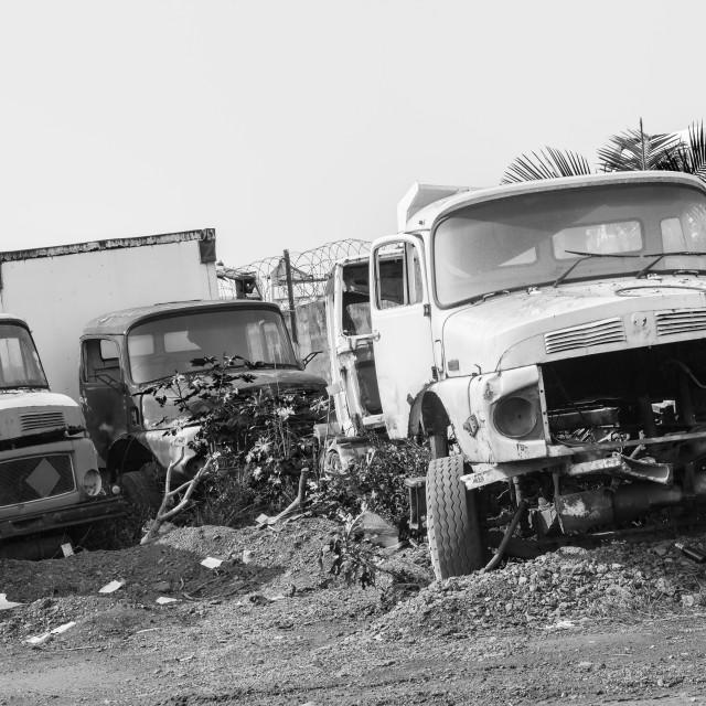 """""""Trucks Vehicles Abandoned"""" stock image"""
