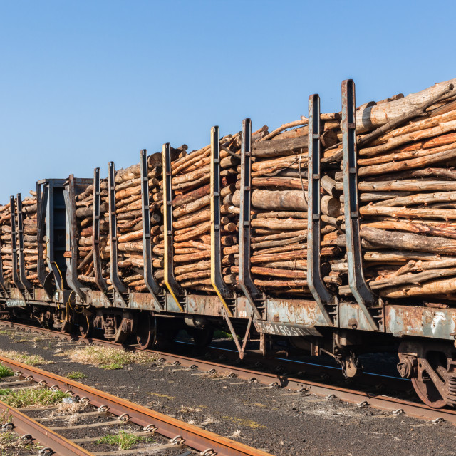 """Train Wood Poles"" stock image"