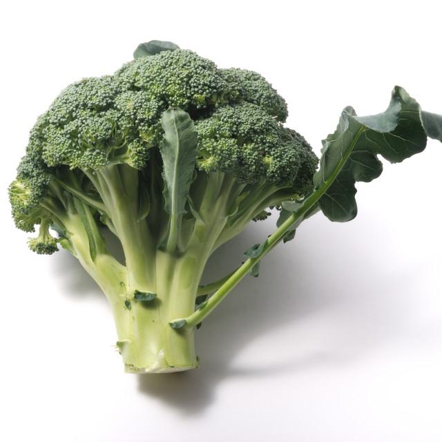 """Broccoli on white background"" stock image"